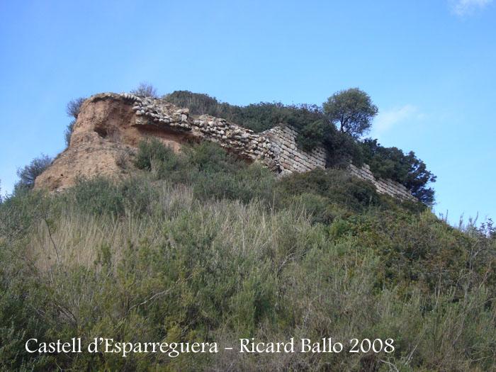 castell-d-esparreguera-081213_515
