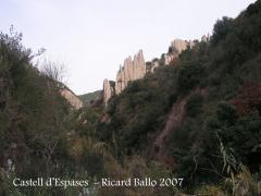 """Castell d'Espases-¿ El nom d'Espases podria tenir quelcom a veure amb aquestes """"espases naturals ?"""