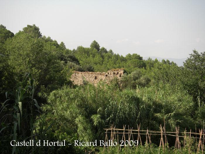 castell-d-hortal-090715_702