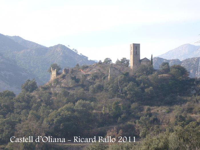 castell-doliana-110211_505