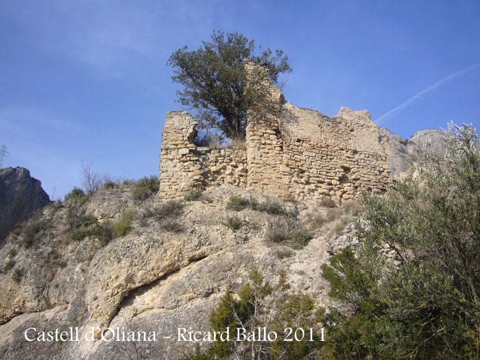 castell-doliana-110211_520