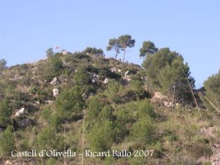 Castell d'Olivella