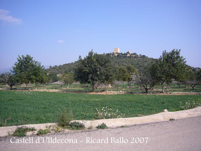 castell-dulldecona-070317_505