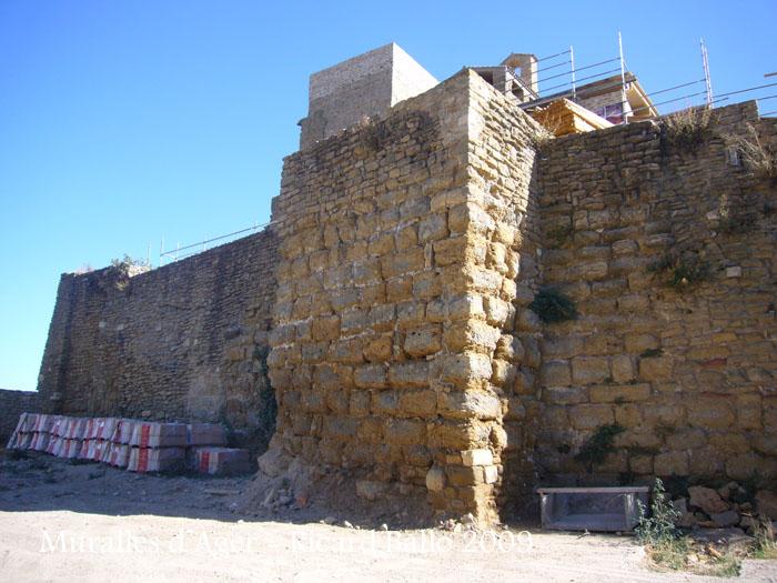 castell-i-muralles-dager_518