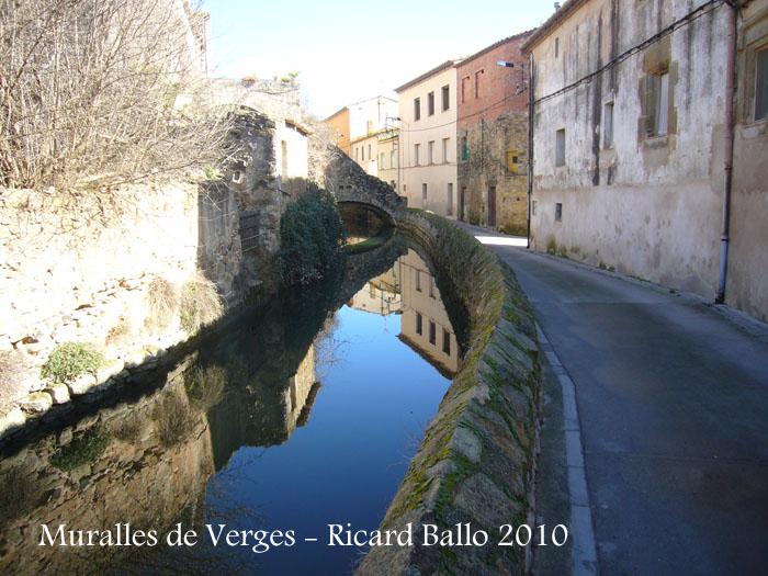 castell-i-muralles-verges-100206_521
