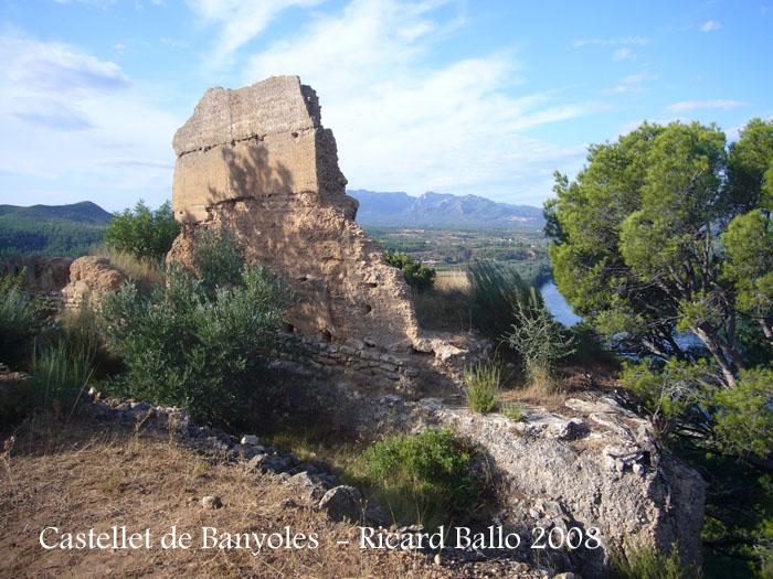 castellet-de-banyoles-080912_536