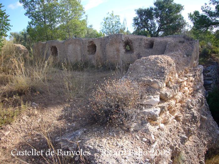 castellet-de-banyoles-080912_544
