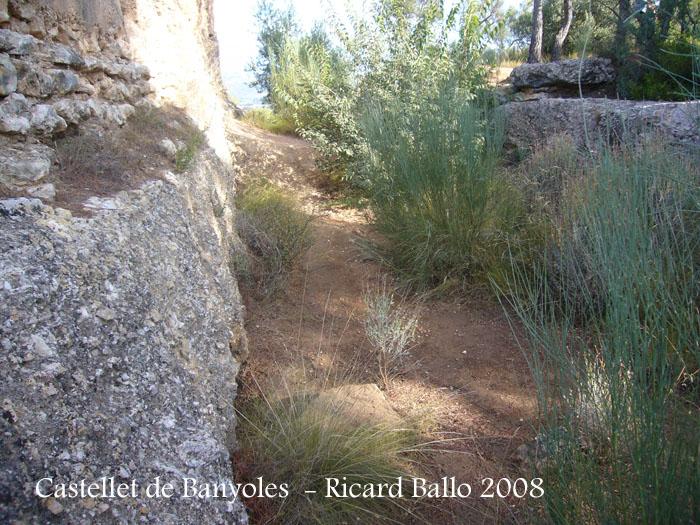 castellet-de-banyoles-080912_551