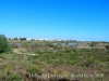 Espais naturals del Delta del Llobregat  – Prat de Llobregat