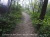 Dolmen de les Closes – Porqueres - Camí d'accés - Aquí ja hem sobrepassat la cadena que hi ha al terra.