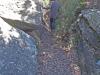 Dolmen de Sequers de Gasala - Taradell - Entalladura a la roca que citem al text de la pàgina