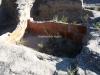Els Trullets – Benavent de Segrià - Aquest cup conserva encara l'enrojolat de les parets