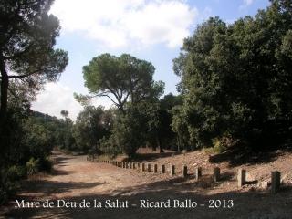 Ermita de la Mare de Déu de la Salut – El Papiol - Entorn.