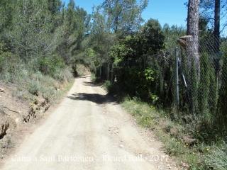 Una mostra d'un tram del camí que mena a l' Ermita de Sant Bartomeu – Riudecols