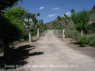 Ermita de Sant Joan de Carratalà - Camí d'accés.