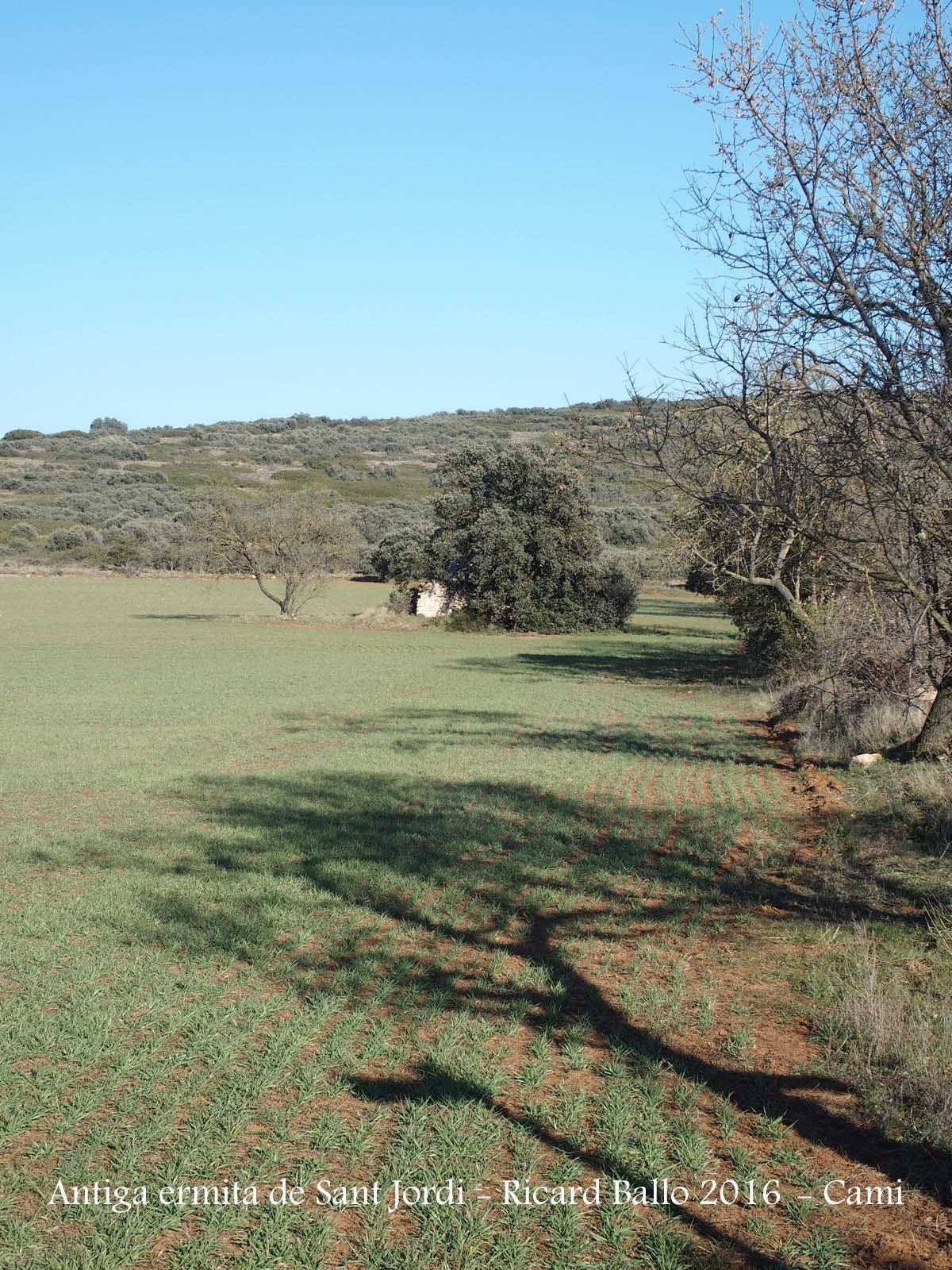 Camí a l'Ermita VELLA de Sant Jordi - Camarasa - L'església s'amaga dins del bell mig d'aquesta arbreda