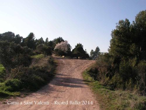 Camí a l'ermita de Sant Valentí de les Brucardes – Sant Fruitós de Bages - Continuarem per l'esquerra i amunt.