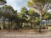 Ermita dels Apòstols – Lladó - Àrea de lleure - pícnic