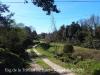 Una vista del camí d'accés a l'Església de la Trinitat de Batet – Olot