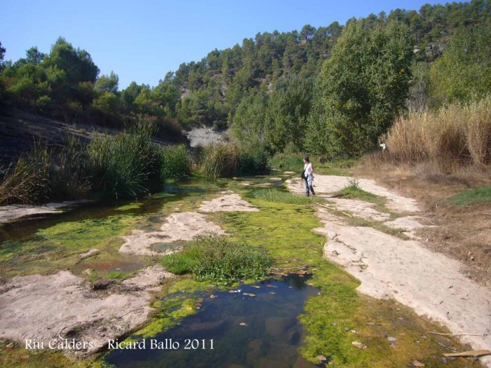 Calders - Riu Calders - Estiu 2011.