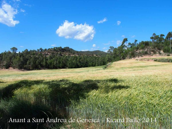 Anant a l'Església de Sant Andreu de Genescà – Gaià