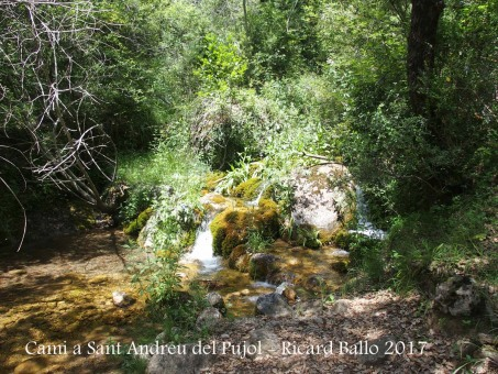 Camí a l\'Església de Sant Andreu del Pujol del Racó – La Coma i La Pedra