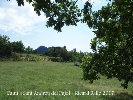 Camí a l'Església de Sant Andreu del Pujol del Racó – La Coma i La Pedra