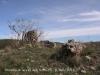 Església de Sant Genís de la Vall dels horts – Sant Fruitós de Bages