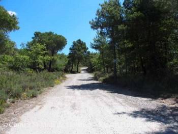Camí d'accés a l'Església de Sant Jordi de Lloberes – Gaià i a Sant Miquel de Terradelles - Santa Maria de Merlès