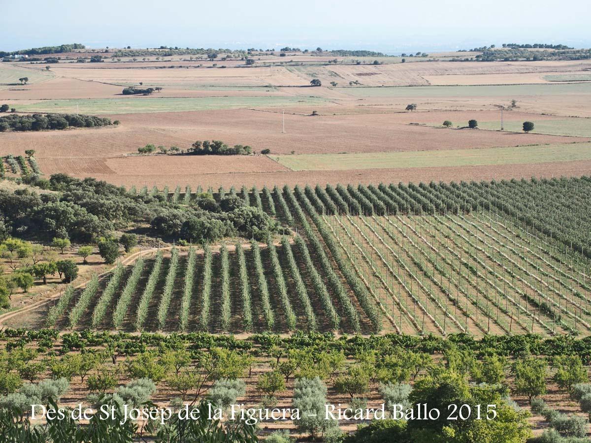 Vistes des de l'Església de Sant Josep de la Figuera – Algerri
