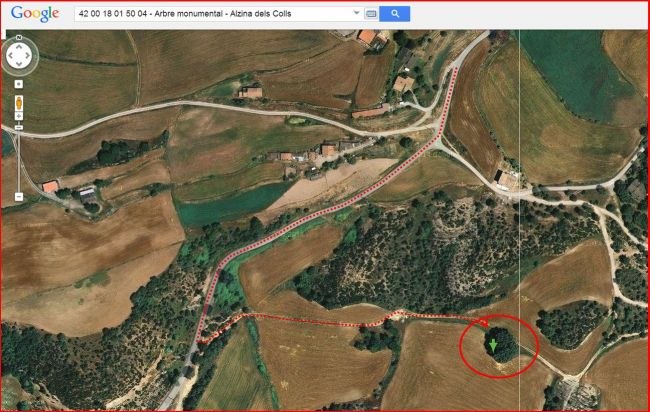 Itinerari a l'alzina dels Colls – Casserres - Captura de pantalla de Google Maps, complementada amb anotacions manuals.