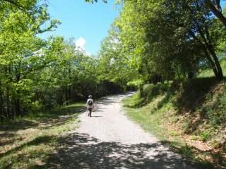 Un tram del camí d'accés a l'Església de Sant Miquel del Mont