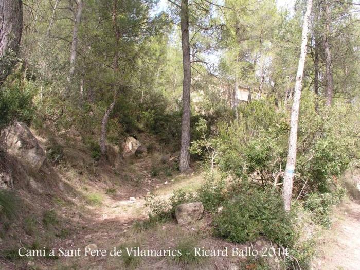 Camí a l'Església de Sant Pere de Vilamarics – Monistrol de Montserrat - Part final del recorregut - Inici camí poc fressat.