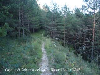 Camí a l'Església de Sant Sebastià del Sull – Saldes