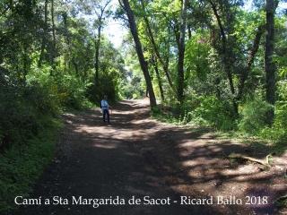 Camí a l'església de Santa Margarida de Sacot – Santa Pau