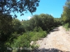 Una mostra del camí cap a l'Església de Santa Maria de l'Estela – Cabanelles