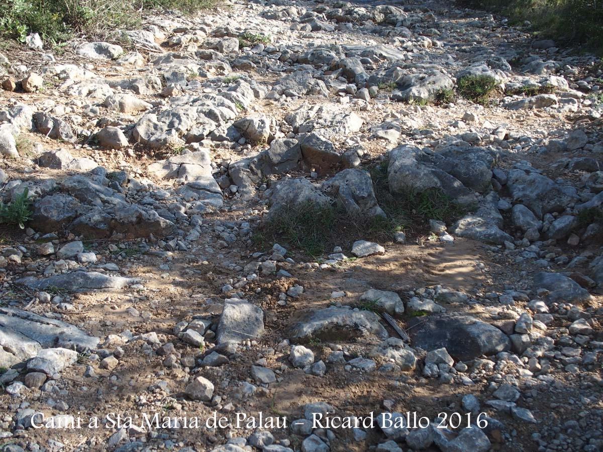 Camí a l\'Església de Santa Maria de Palau – Torroella de Montgrí