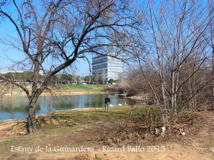 Estany de la Guinardera – Sant Cugat del Vallès