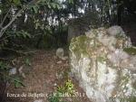 forca-de-bellpuig-tortella-110922_524