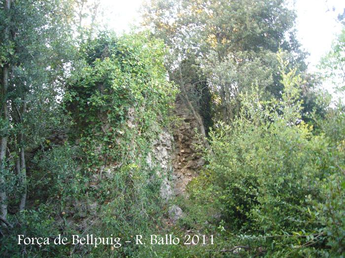 forca-de-bellpuig-tortella-110922_510