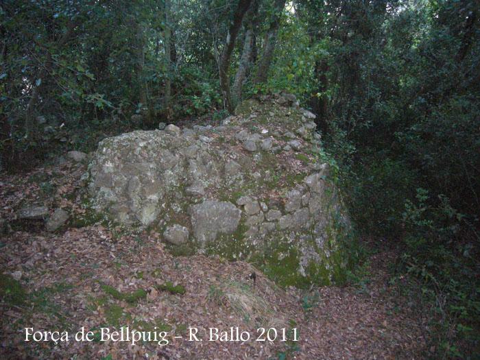 forca-de-bellpuig-tortella-110922_517