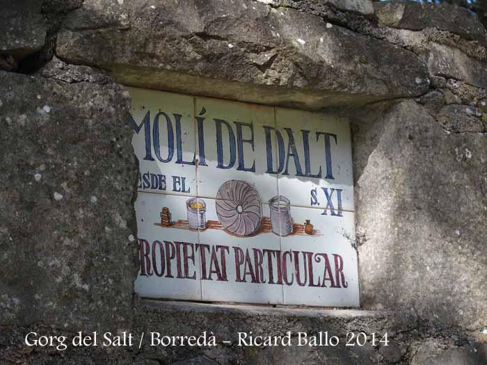 Gorg del Salt - Borredà