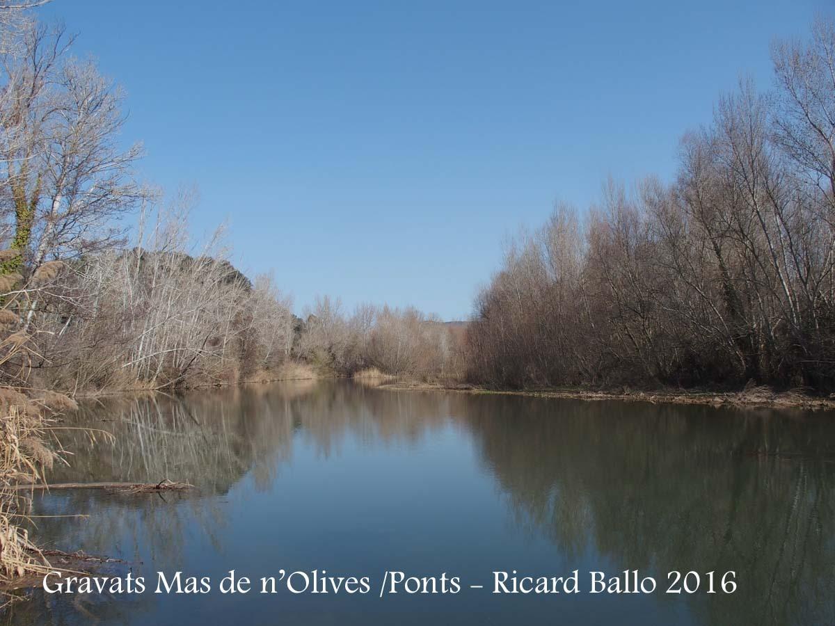 Gravats del Mas de n'Olives - Ponts - Riu Segre