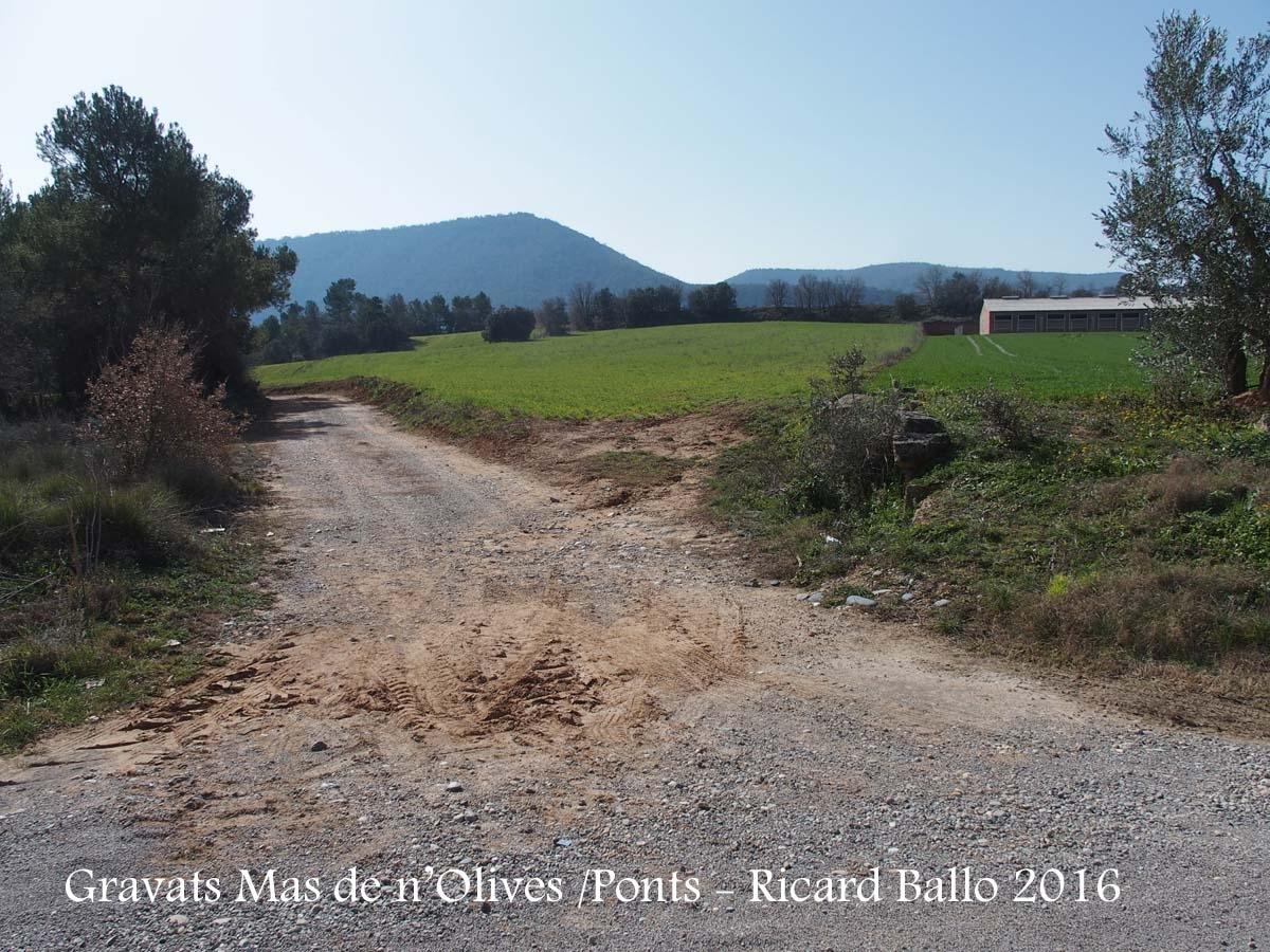 """Gravats del Mas de n'Olives - Ponts - Vista del lloc on diem \"""" ... Procedents de Torreblanca, i a mig camí de Santa Cecília, a la vora del mas de n'Olives, en un punt situat a 41 55 26.7 01 08 31.5, prenem un camí de terra ...\"""""""