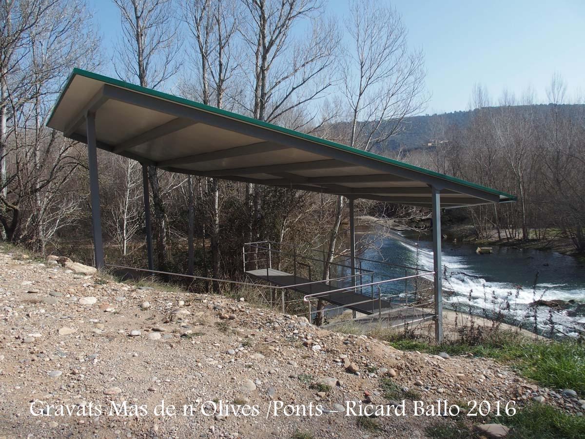 Gravats del Mas de n'Olives - Ponts - Als peus hi veiem el riu Segre