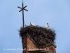 La Guàrdia d'Urgell - Tornabous - Niu de cigonyes al cap de munt del campanar de l'església