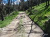 Camí a La Sala / Viladrau