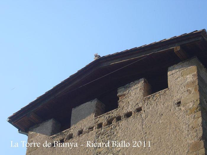 la-torre-de-bianya-110908_512
