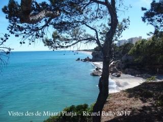 Miami platja - Vistes