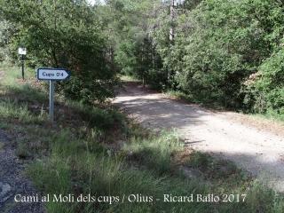 Camí al Molí dels cups – Olius
